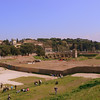 The grounds of the Circus Maximus. The last known chariot race was held in 549, and the stones that formed the Circus Maximus were carted away for other construction projects in the vicinity.