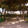 The gardens of the Giardino degli Aranci.