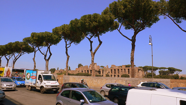 Italian stone pines line the Via del Circo Massimo, overlooking the ruins of the Circus Maximus, the grounds for chariot races.