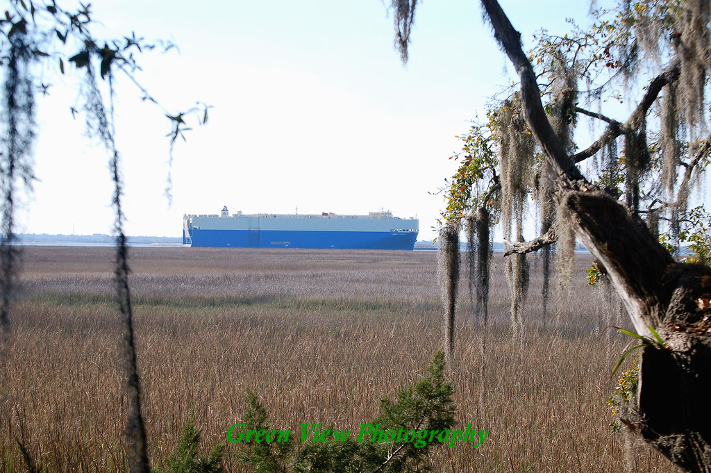 Freight Boat Between Trees
