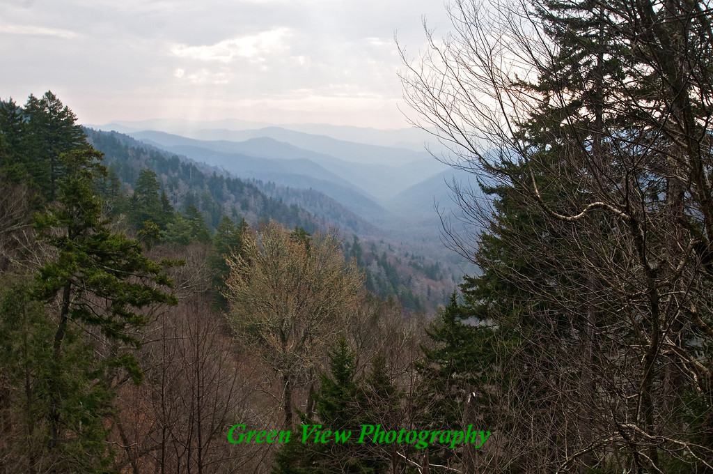Newfound Gap - Great Smokey Mountains