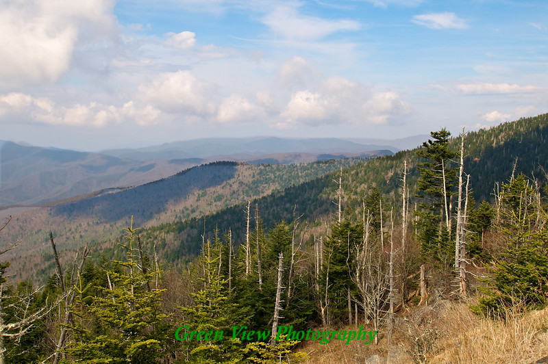 Top of Clingmans Dome - Highest point in the Smokies 6643ft