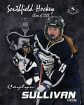 caylyn poster08