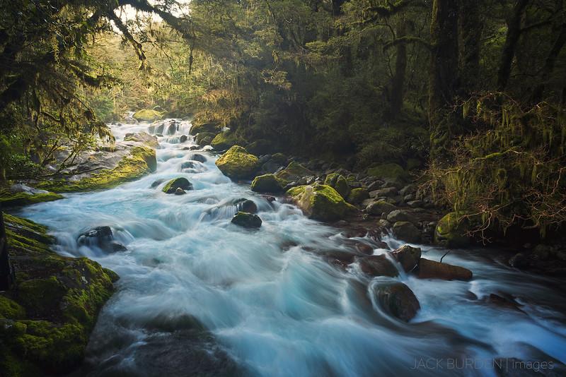 Fiordland River