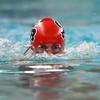 0033-swimmingvscarroll15