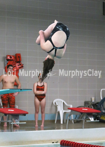 0010-swimmingvsnn-snrnt18
