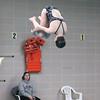 0025-msswimmingvsnn19