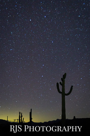 Saguaro and the Dipper
