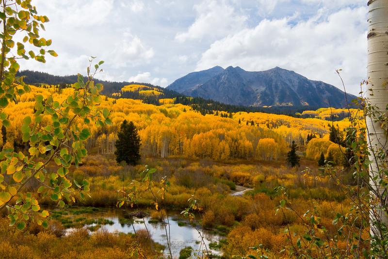 Southwest Fall Color