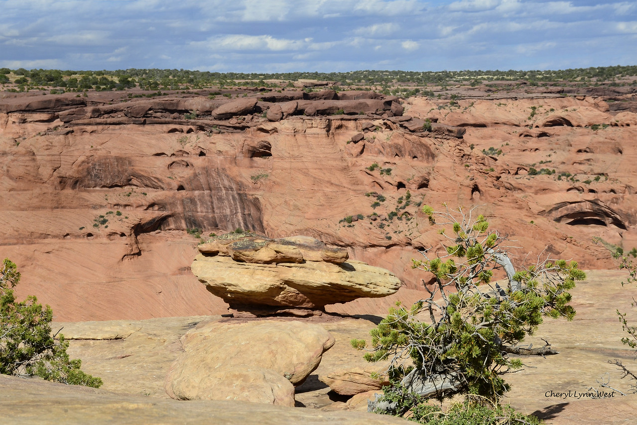 Canyon de Chelly, Arizona - starting point for our hike down to the canyon floor