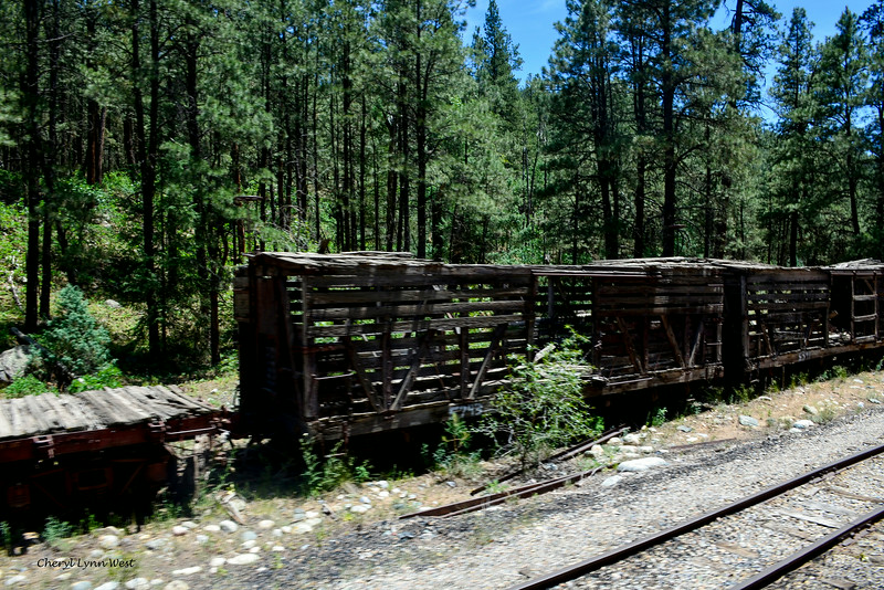 Durango & Silverton Narrow Gauge Railroad, Colorado - Ruined boxcars along the rails on the way back to Durango