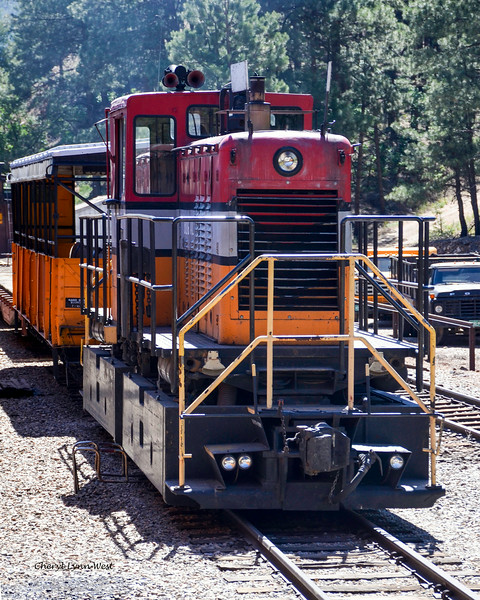 Durango & Silverton Narrow Gauge Railroad, Colorado - Diesel engine on a side rail
