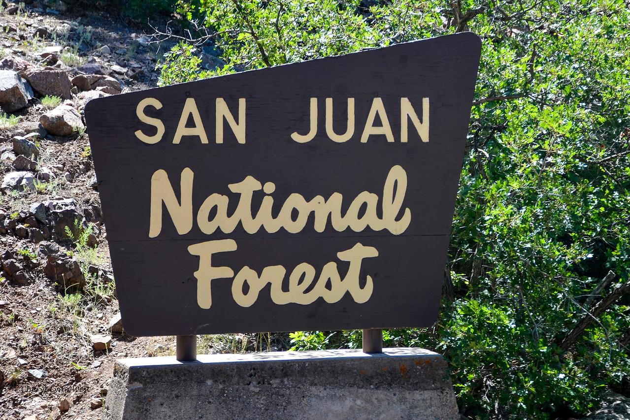 Durango & Silverton Narrow Gauge Railroad, Colorado - Trip went through the San Juan National Forest