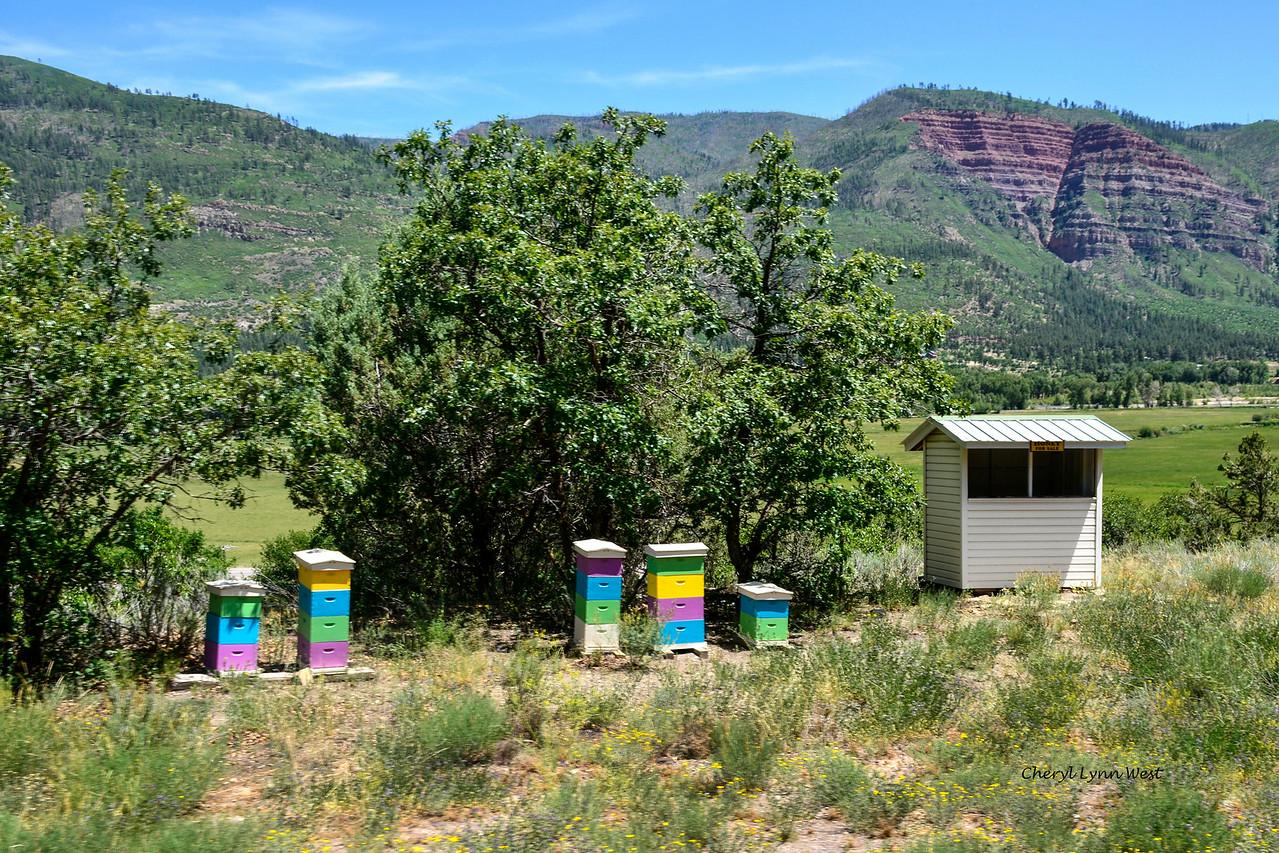 Durango & Silverton Narrow Gauge Railroad, Colorado - Bee hives