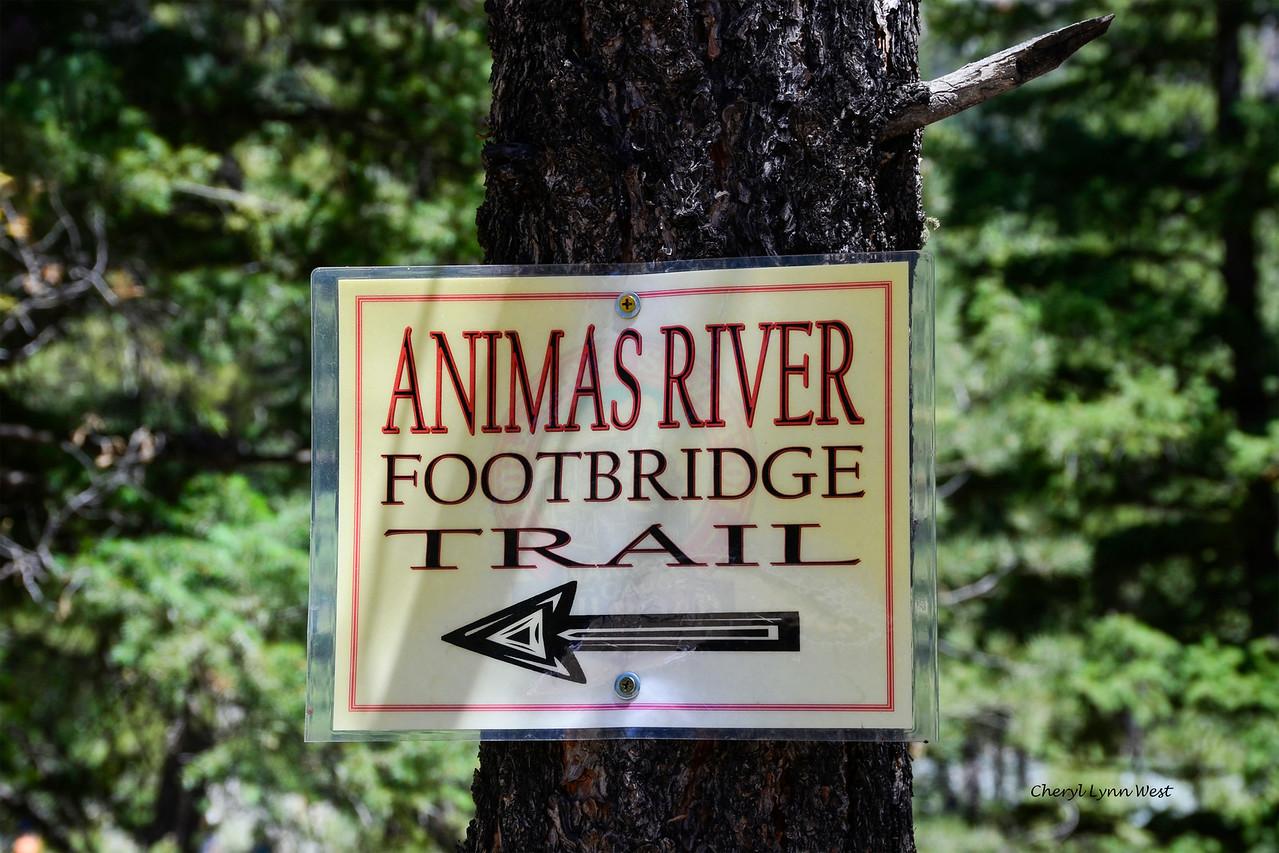 Durango & Silverton Narrow Gauge Railroad, Colorado - Animas River Trial at Cascade Canyon Wey