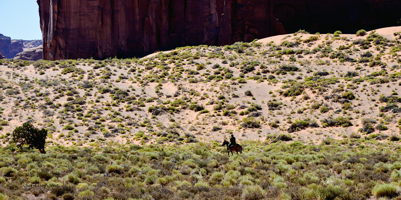 Navajo rider in Monument Valley, Arizona