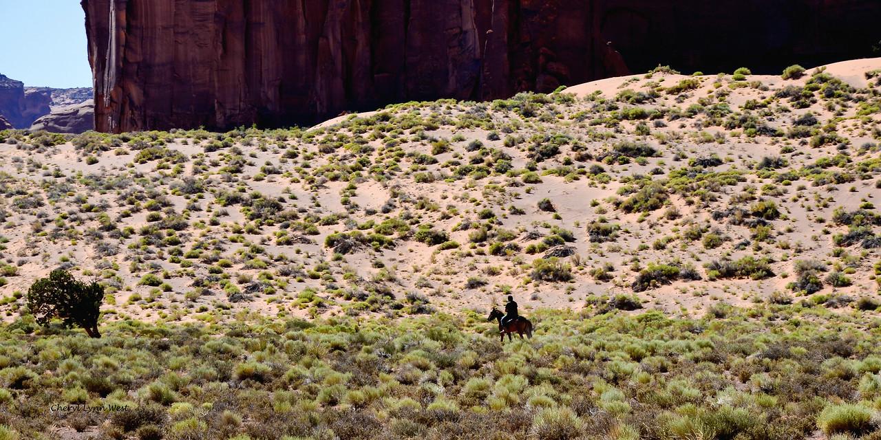 Navajo rider in Monument Valley, Arizona