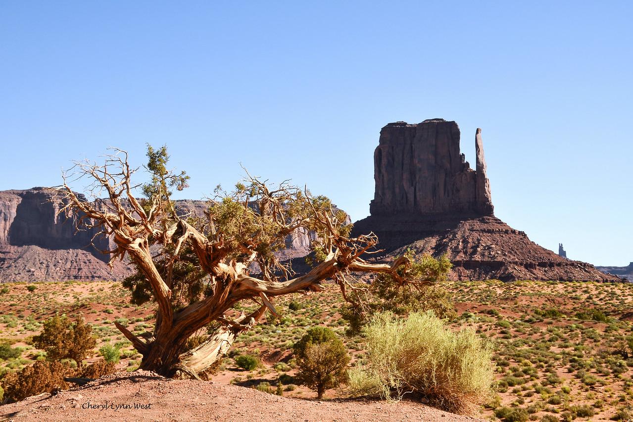 West Mitten, Monument Valley, Arizona