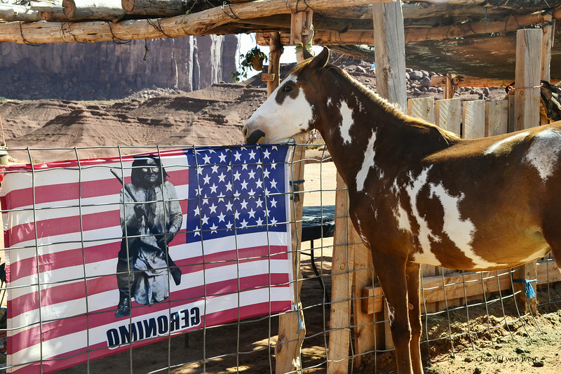 Native American horse and Geromino flag at corral near John Ford's Point, Monument Valley, Arizona
