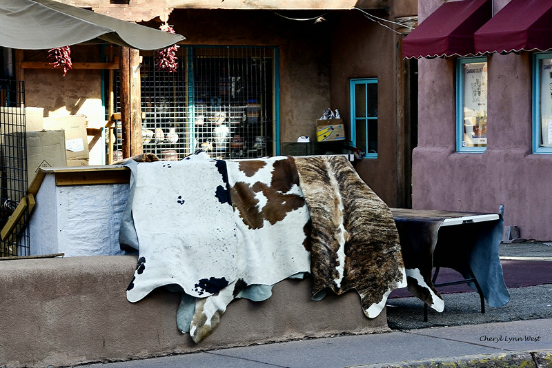 Santa Fe, New Mexico - hides for sale