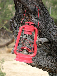 Red Lantern On The Mesquite