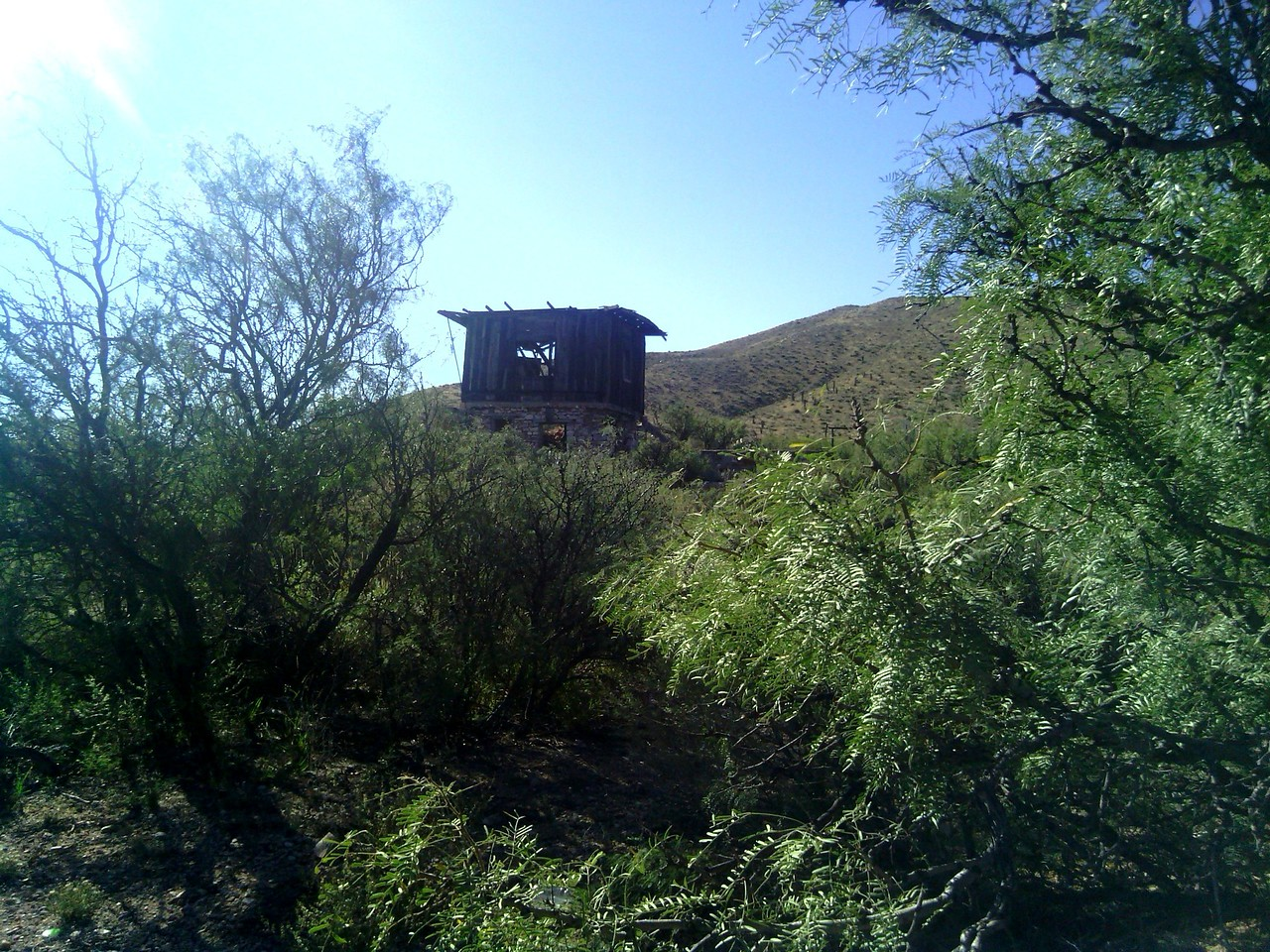 Homestead on the Hill