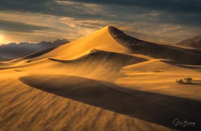 Sandstorm at Ibex 2