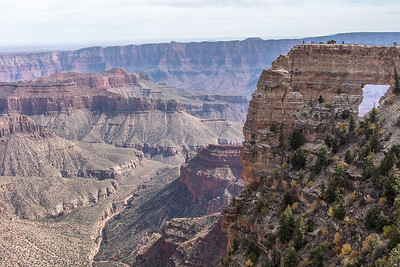 Angels Window on the Cape Royal Trail, Walhalla Plateau,  North Rim of Grand Canyon National Park. Arizona