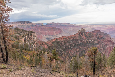 "Eastern view from Roosevelt Point,  North Rim of Grand Canyon National Park.  Arizona.  President Theodore Roosevelt, the leading champion of the U.S. national parks system, was quoted at the Grand Canyon in 1903 : ""Leave it as it is.  You cannot improve upon it.  The ages have been at work,  and man can only mar it."""