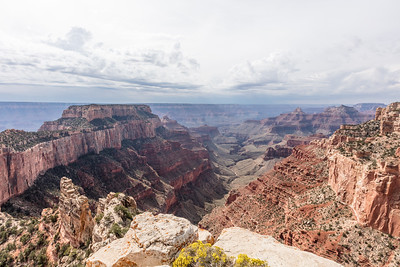 Western view from Point Imperial (8803' elevation).  Wotans Throne on left.   North Rim of Grand Canyon National Park. Arizona.