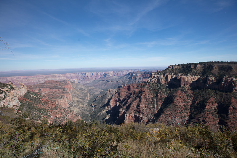 """Eastern view from Roosevelt Point,  North Rim of Grand Canyon National Park.  Arizona.  President Theodore Roosevelt, the leading champion of the U.S. national parks system, was quoted at the Grand Canyon in 1903 : """"Leave it as it is.  You cannot improve upon it.  The ages have been at work,  and man can only mar it."""""""