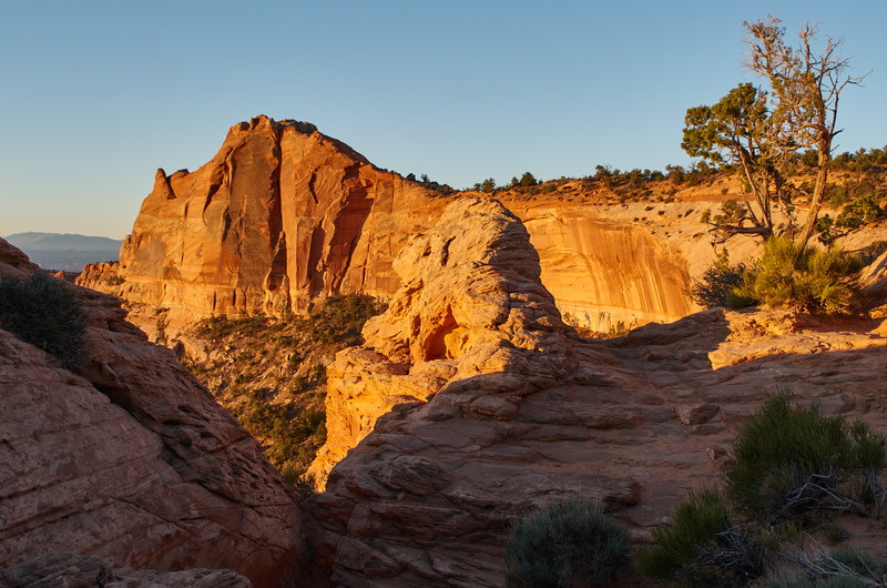 Canyon Edge at Mesa Arch Overlook