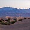 Mesquite Dunes #2