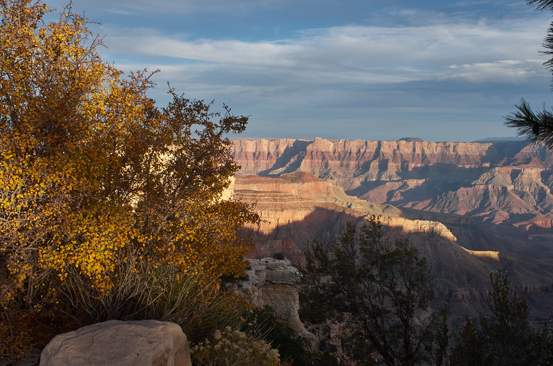 Fall Color at the Walhala Overlook