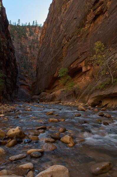 Hiking the Narrows #3