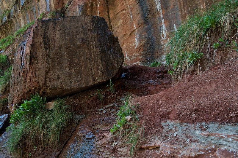Rock near the Emerald Pools