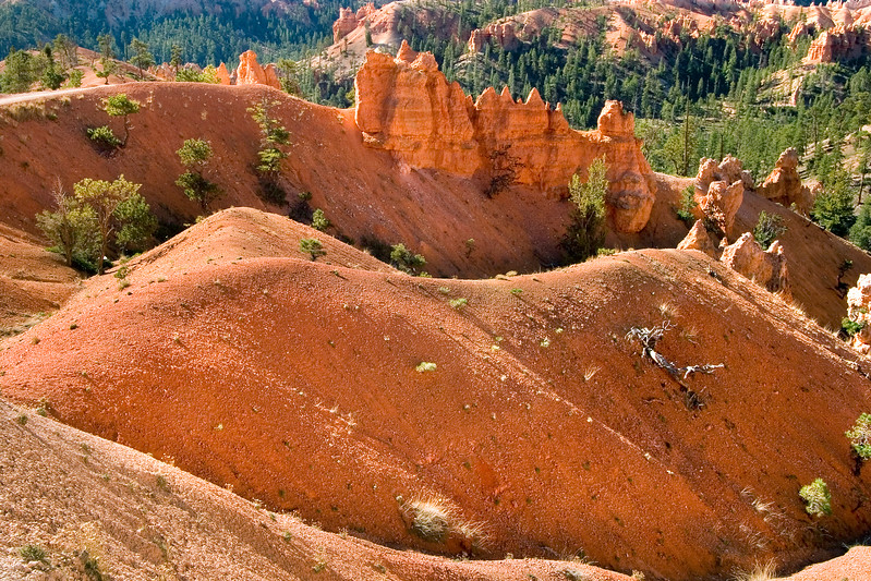 Bryce Canyon Rolling Hills