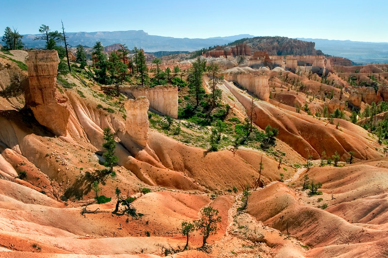 Hills and hoodooes in Bryce Canyon National Park
