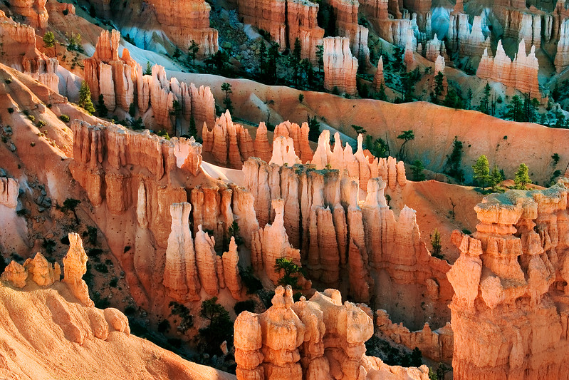 Bryce Hoodoos at Sunrise