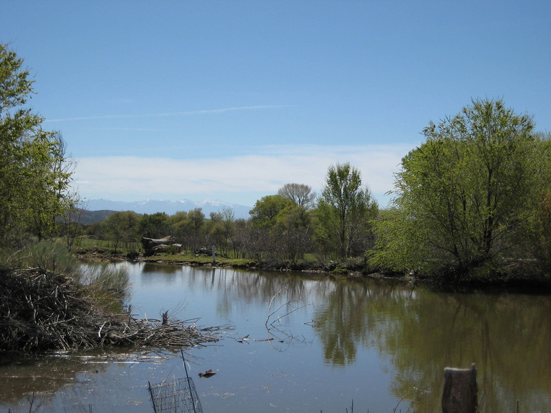 Looking south across a pond, just before entering El Rito, New Mexico from hwy 554 on the east.