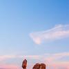 Balanced Sunset