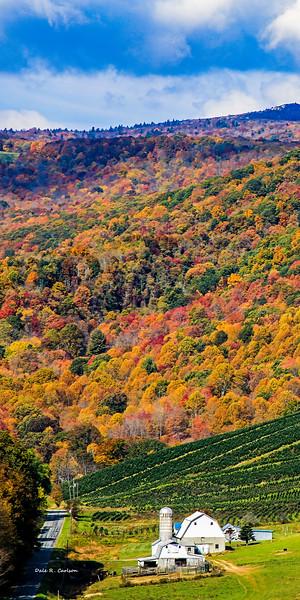 Mountain Palette