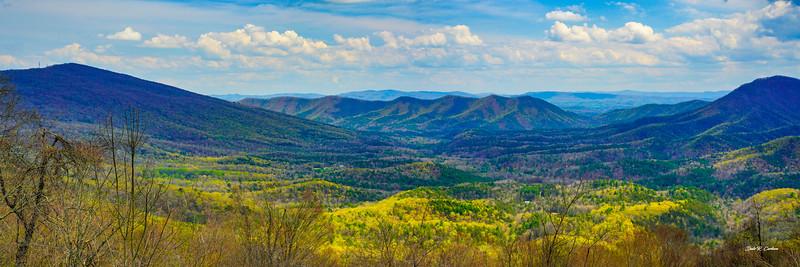 Big Walker Mountain Vista