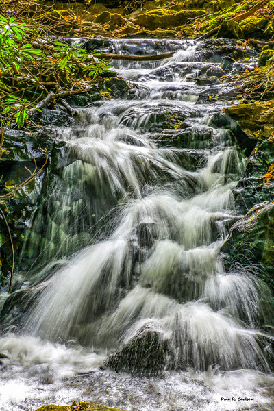 Comer Creek Cascades