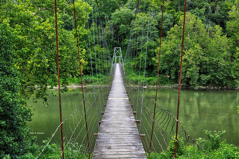 Clinch River Swinger