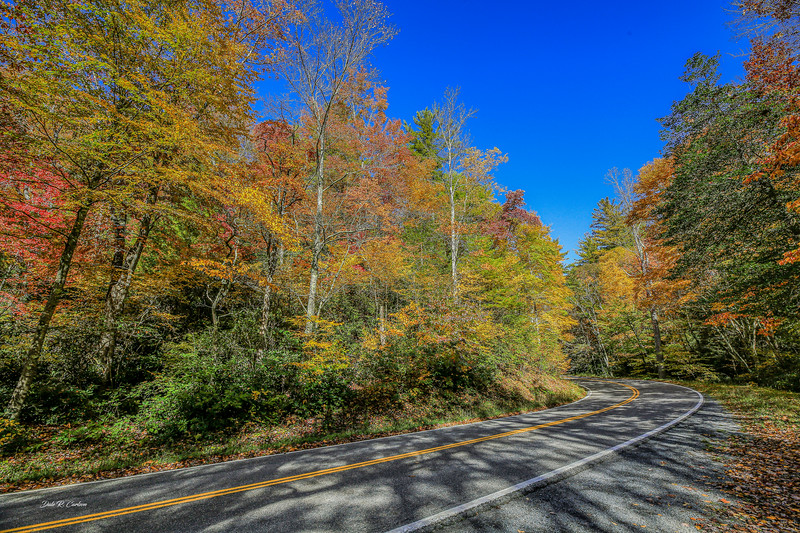 Autumn Bend