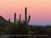 Ajo, Arizona (7)