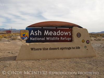 Ash Meadows National Wildlife Refuge, Nevada