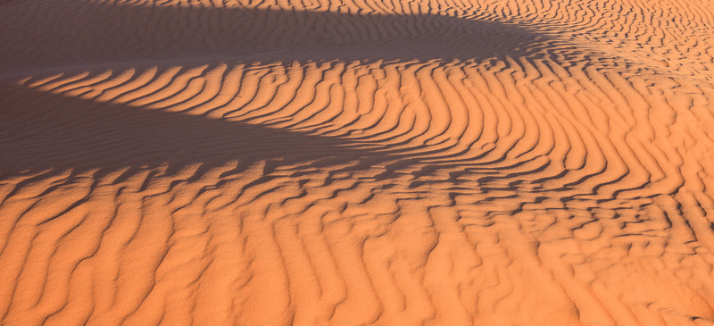 Patterns on the Sand <br /> <br /> Coral Pink Sand Dunes State Park <br /> Kanab, Utah <br /> (5II2-13885)