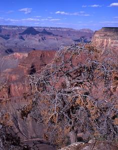 Grand-Canyon-2002-0063
